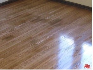 today silly mls photo hardwood floors
