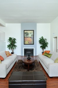 web_living room-fireplace, Home Staging on a Budget, home selling