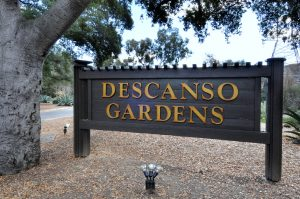 Descanso-Gardens-neighborhood