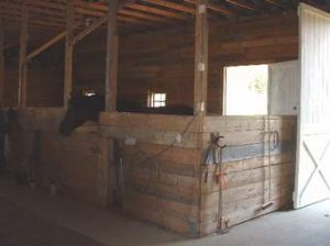 burbank-equestrian-homes-for-sale-phyllis-harb